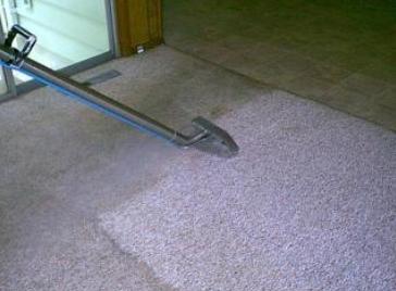 carpet steamer2